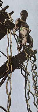salto desde torre de palos  con lianas atadas a los tobillos en Bunlap