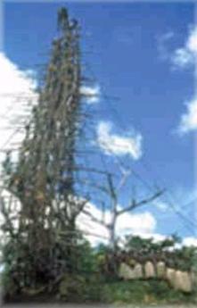 torre de palos para salto ritual en Bunlap, Vanuatu